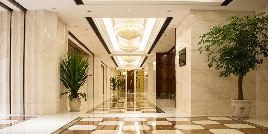 ホテル・宿泊施設向け観葉植物レンタルのメリット