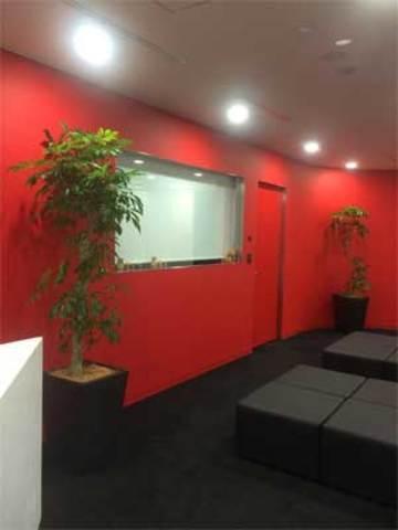 港区のオフィスへの観葉植物の設置事例