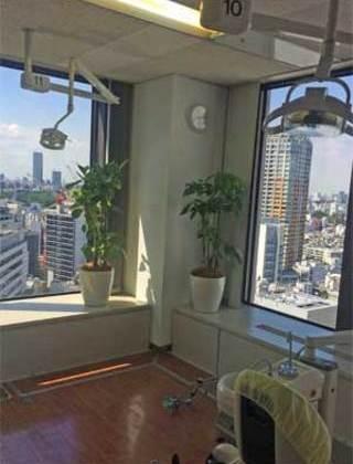 渋谷区の歯科医院への観葉植物の設置事例サムネイル