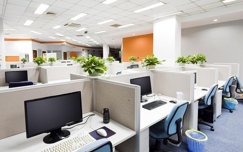 「うちのオフィス、グリーンを何鉢置いたらいいですか?」サムネイル