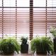 観葉植物はオフィスの雰囲気に合わせて色合いを選ぼう!