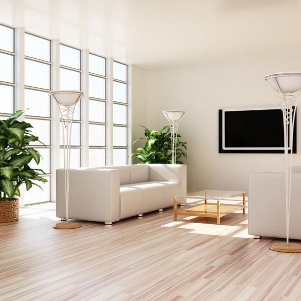 オフィス内でオススメの観葉植物の置き場所とは?サムネイル
